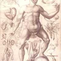 human_body_1613_remmelin1.jpg