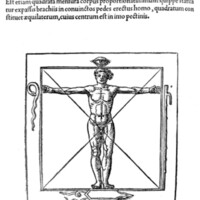 Agrippa proportions 1533.jpg